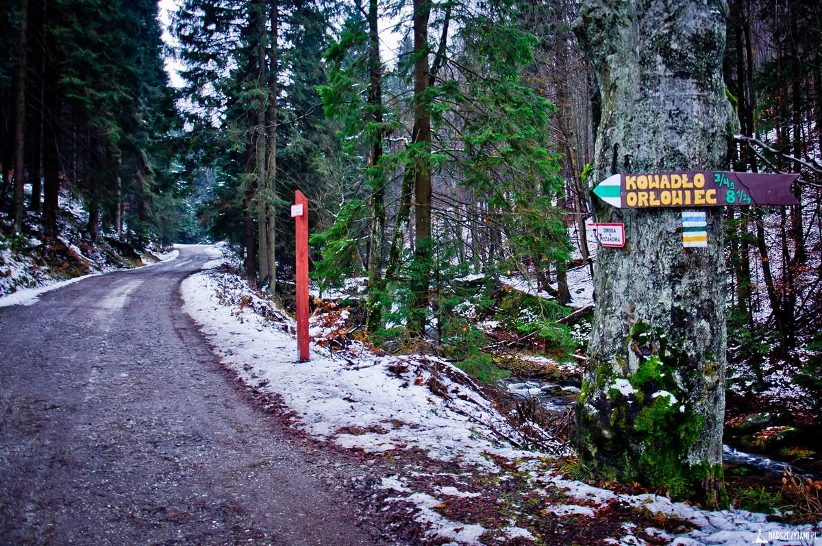 Trasa Rudawiec i drogowzkaz na Kowadło