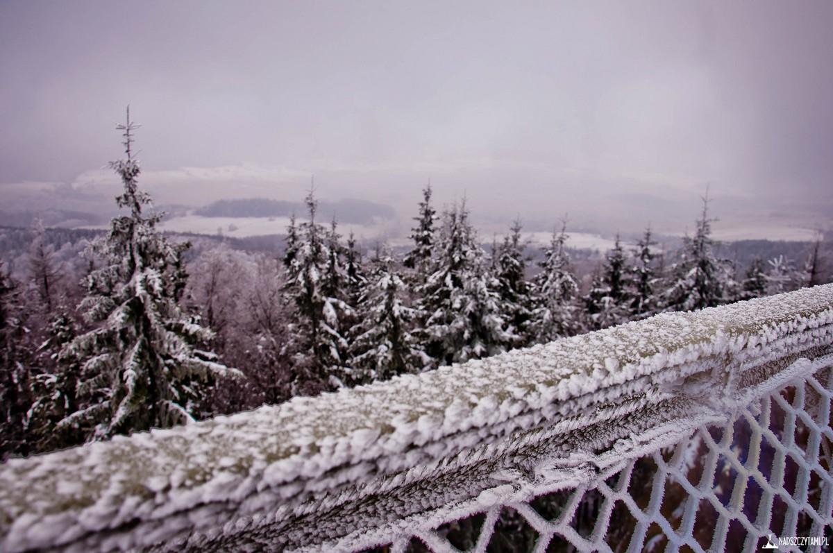 szczyt borowa widok z wieży