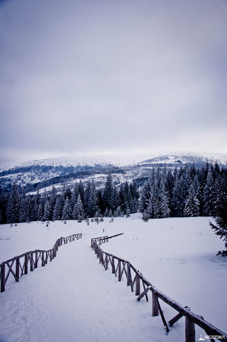 Szklarska - Karpacz trasa zimowa