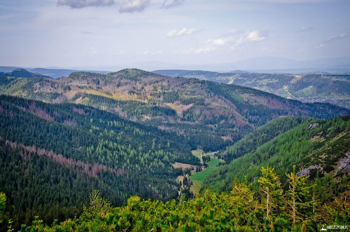 Widok z Tatr