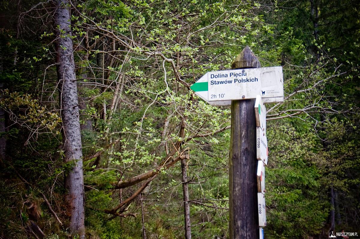 Dolina Pięciu Stawów - szlak zielony