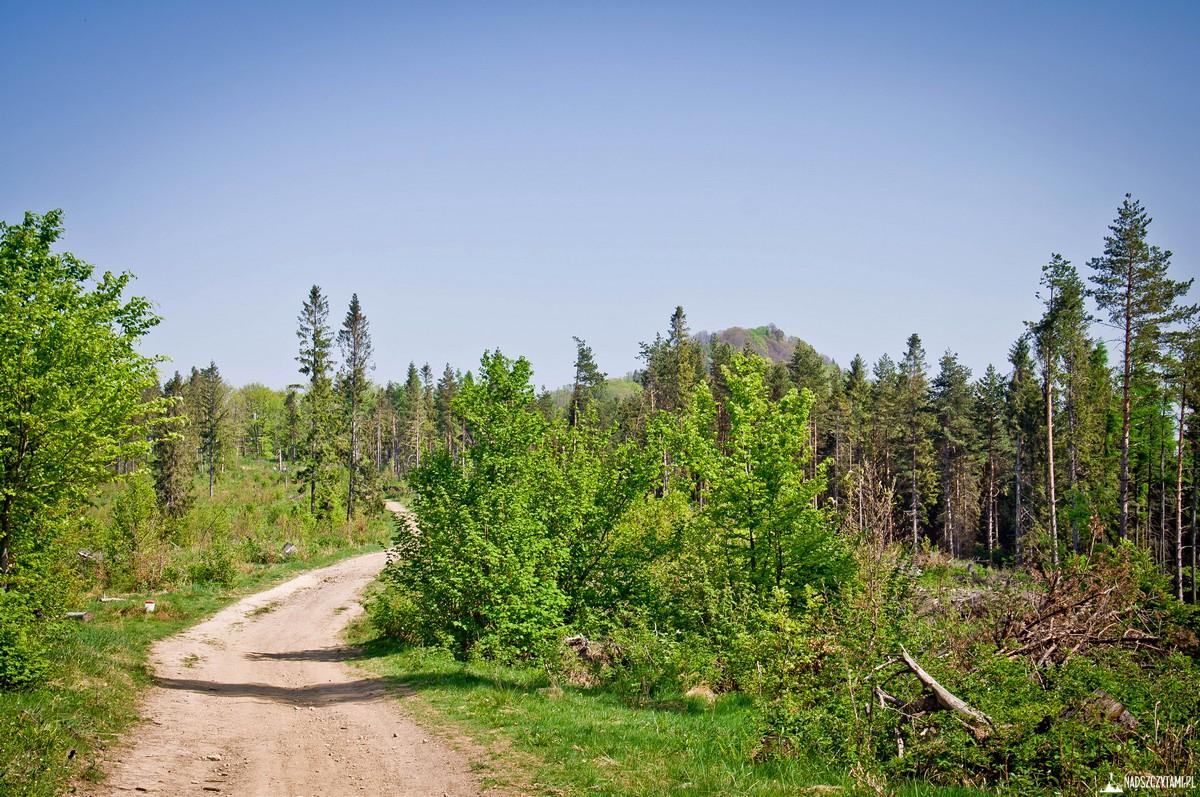Szlak na Wysoką - Pieniny