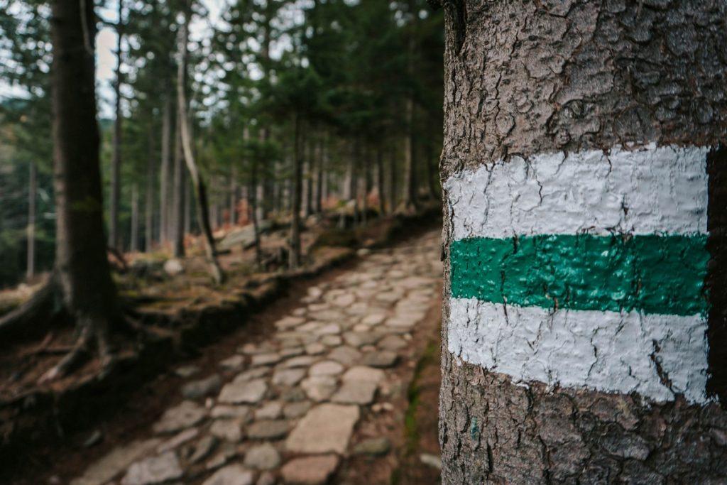 Zielony szlak na Śnieżkę z Karpacza przez Samotnię i Strzechę Akademicką