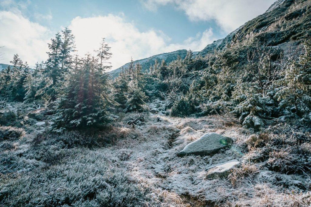 Śniezka - Szlak zielony