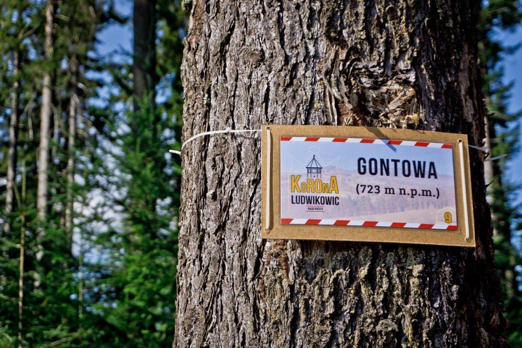 GOntowa - Góry Sowie