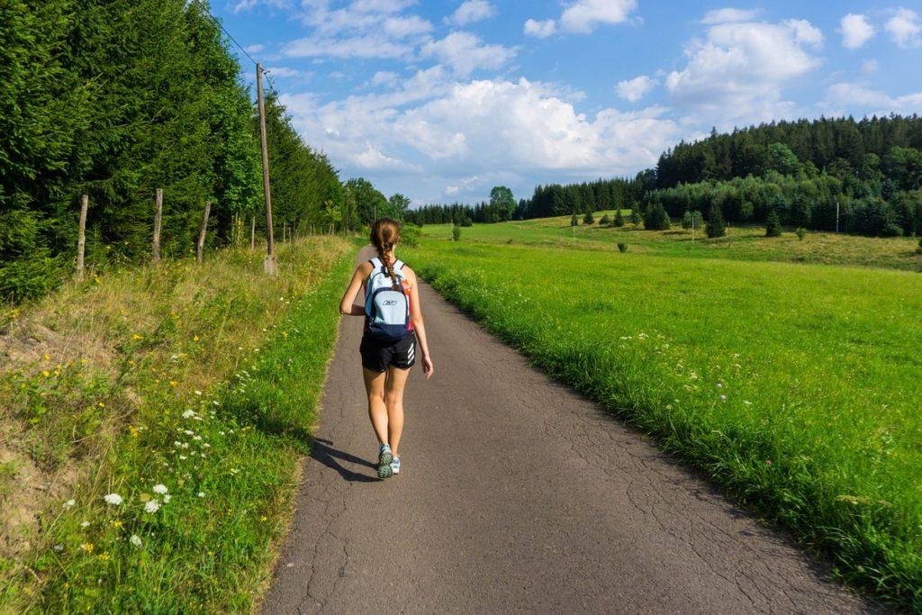 Korona Ludwikowic - Rajd pieszy góry sowie