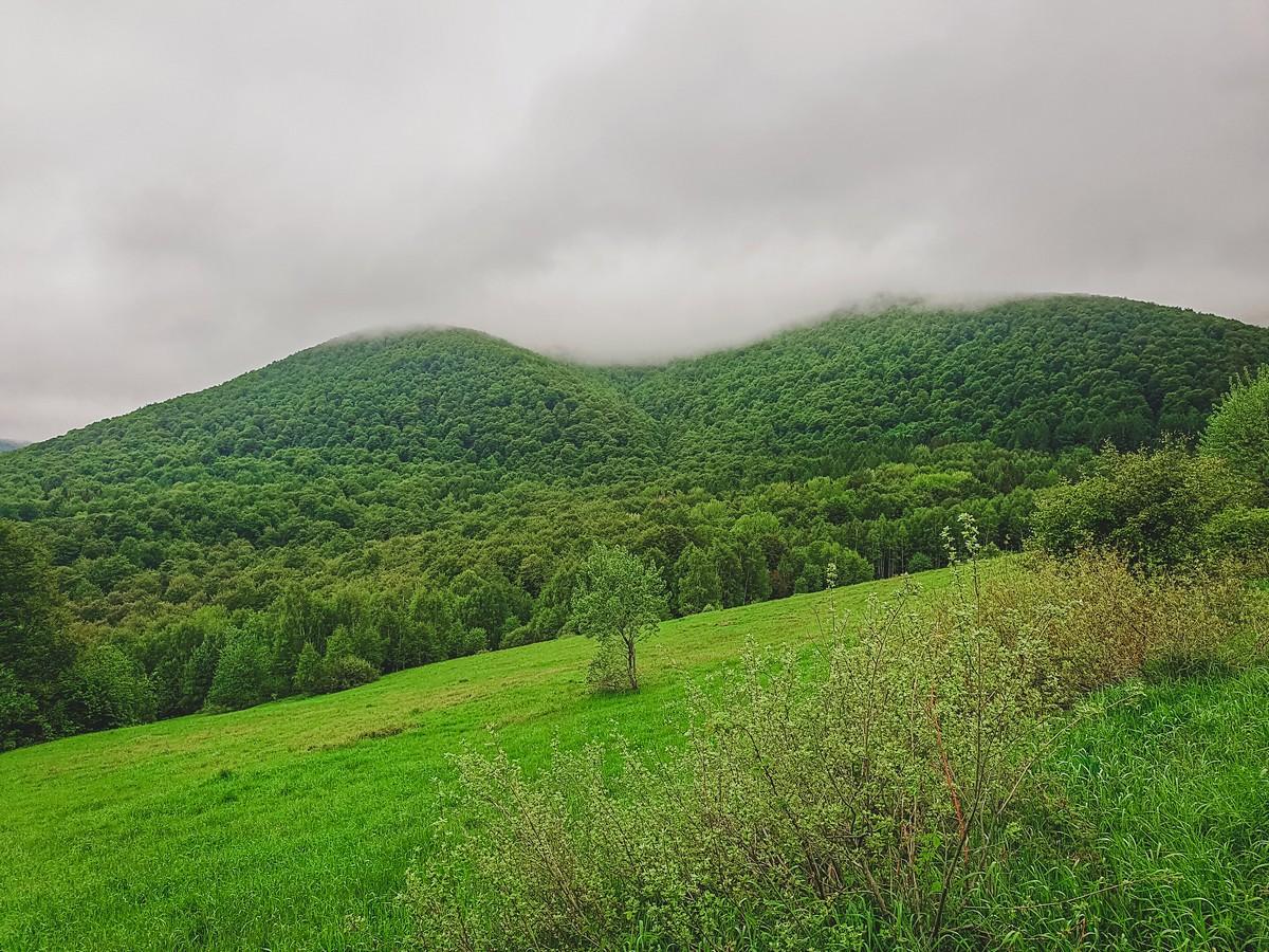 Przełęcz Wyżniańska - Bieszczady