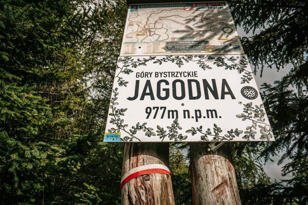 Szczyt Jagodna - Góry Bystrzyckie