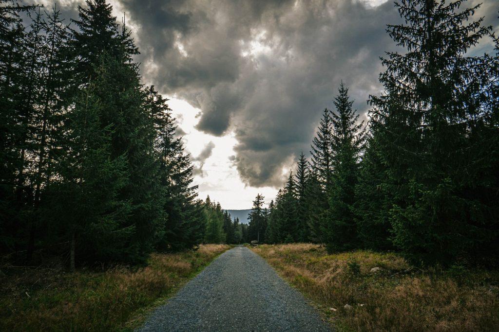 Jagodna - Góry Bystrzyckie