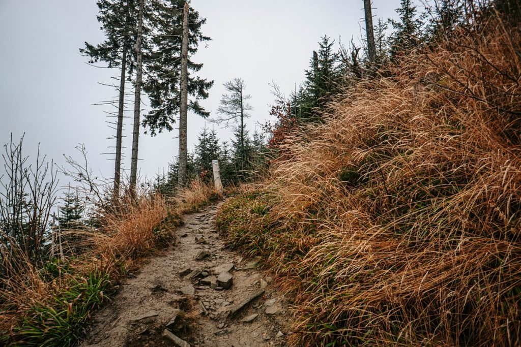 Niebieski Szlak ze szczyrku na najwyższy szczyt Beskidu Śląskiego