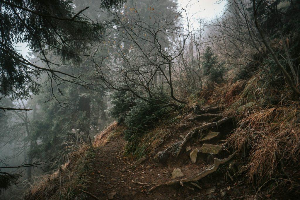 Skrzyczne - szlak niebieski Beskid Śląski